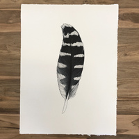 Feather on Handmade Natural Paper 48 x 64
