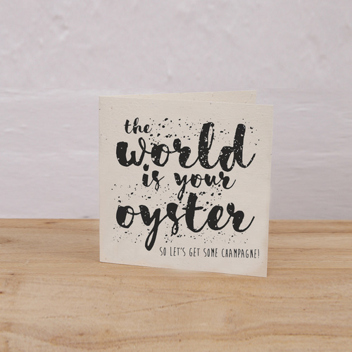 Plantable Gift Tag Pack of 6 (World is Your Oyster)